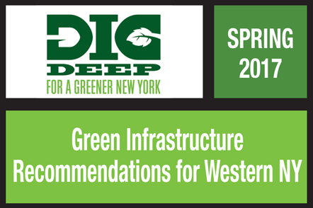 green infrastructure recommendations for western ny publication environment